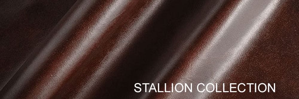 stallion-collection.jpg