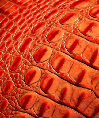 Italian Hornback Red