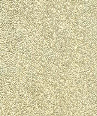 Shagreen Ivory