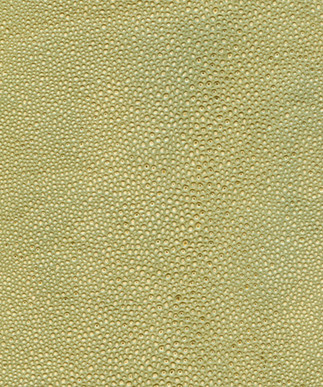 Shagreen Golden Sand
