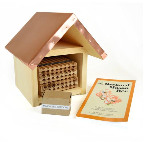 Mason Bee Kit - Small
