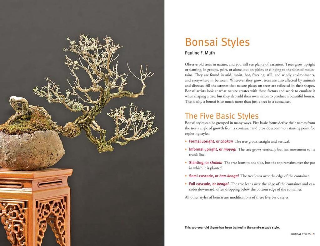 Growing Bonsai Indoors - BKGBI