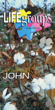 Church Banner featuring Ripe Cotton with Life Groups Theme