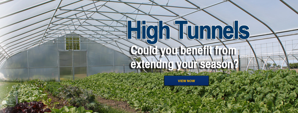 High Tunnels. Could you benefit from extending your season?