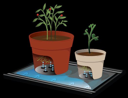 waterpulse-mat-with-plants-diagram1.png
