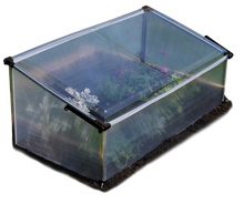Cold Frame Single - Mini Garden Greenhouse