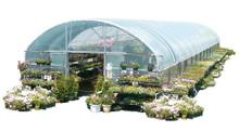 Garden Mart® - Retail Greenhouse
