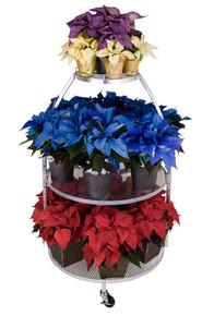 Circular Display - Floral Display
