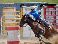 ​How Fast Will Magnesium Supplementation Work for My Horse?