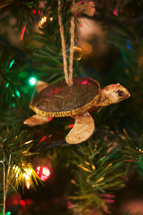 Brown Sea Turtle Ornament