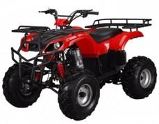 ATA-250D TaoTao Kids 200cc Utility ATV