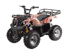 ATA-110D TaoTao Kids 110cc Utility ATV