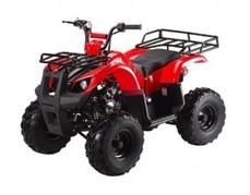 ATA-125D TaoTao Kids 125cc Utility ATV