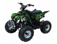 ATA-125A TaoTao Kids 125cc Sport ATV