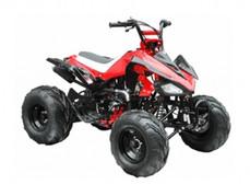 ATA-125G TaoTao Kids 125cc Sport ATV
