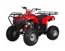 ATA-125F1 TaoTao Kids 125cc Utility ATV