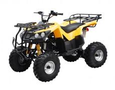 ATA-150B TaoTao Kids 150cc Utility ATV