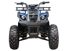 TForce TaoTao Adult 110CC Utility ATV