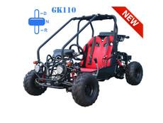GK110 TaoTao Kids 110CC Go Kart