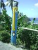 Funny Bugga-Bugga Pen from St Lucia # 1 of 2