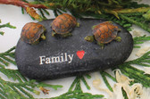 Turtle Turtles Family Words Stone Rock Home Decor 3' NeW