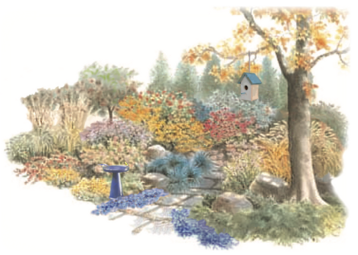 Bird Paradise Garden