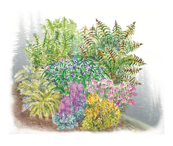 Nature's Bounty Garden