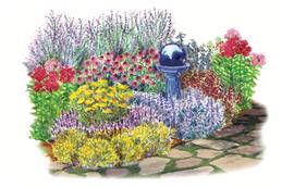 No Fuss Perennials Garden