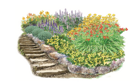 Rainbow Hill Garden