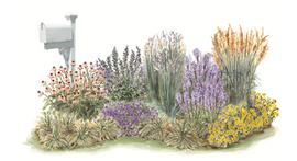 Wild Prairie Garden