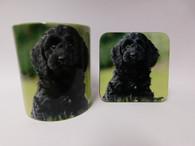 Cockapoo Dog Mug and Coaster Set