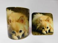 Pomeranian Cream Laying Cute  Mug and Coaster Set