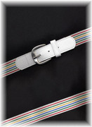 White Striped Stretch Belt