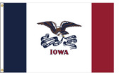 Iowa 5'x8' Nylon State Flag 5ftx8ft