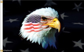 Patriotic Eagle 2ftx3ft Nylon Flag