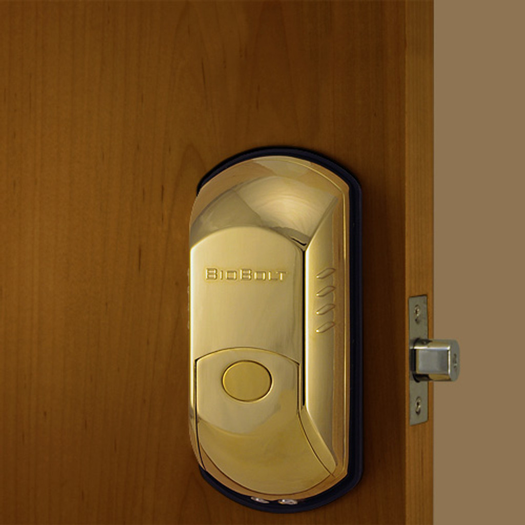 Polished Brass Front Lock Body