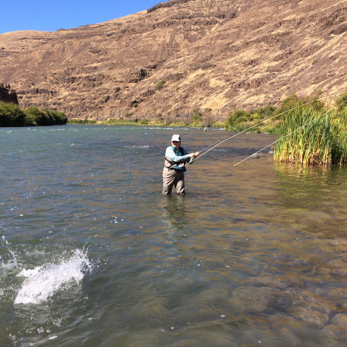 Deschutes River - Summer Steelhead Trip (Book it)