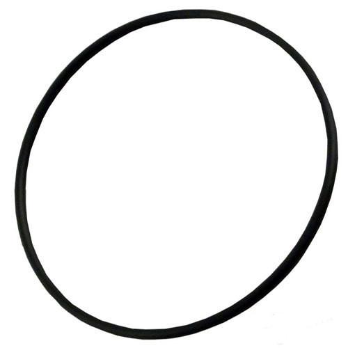 "O-Ring for 2-1/2"" Waterway, Aqua-Flo Pump Union"