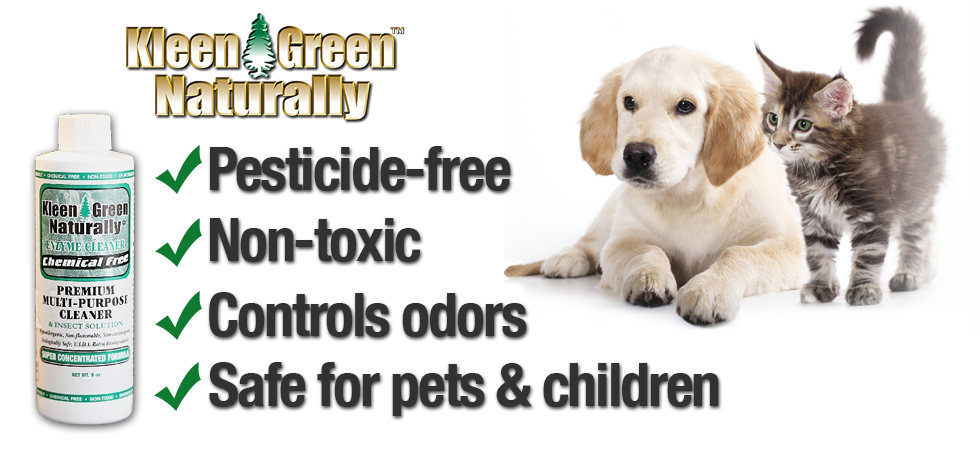 Kleen Green is safe for Pets