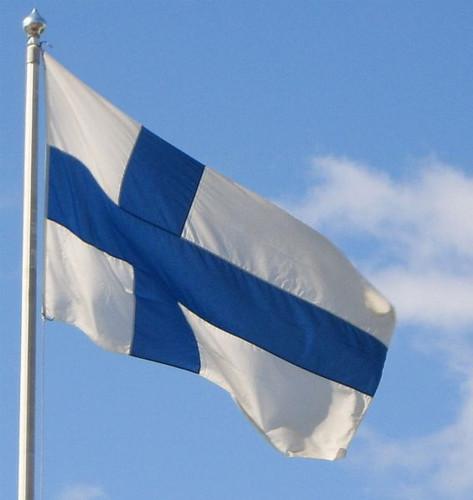 Finnish Flag, 2x3
