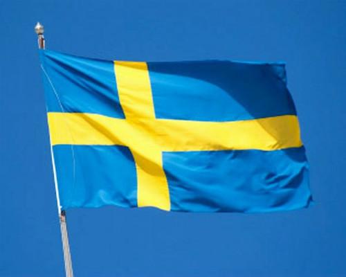 Swedish Flag, 2x3