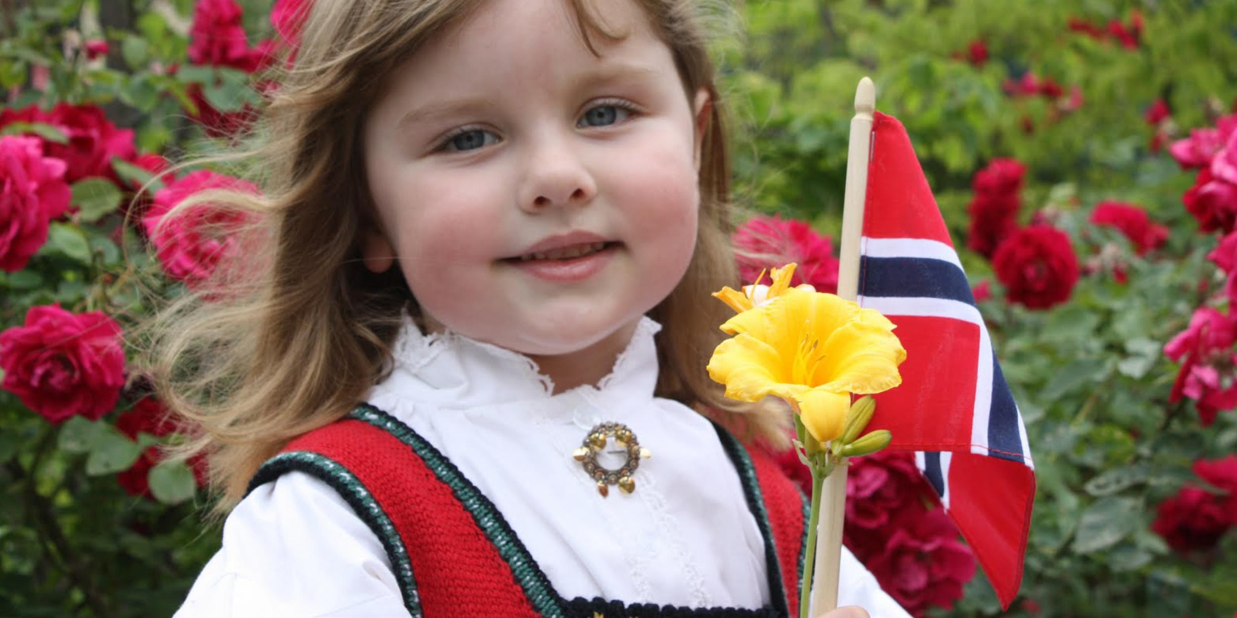 Norwegian Solje Jewelry at the Nordic Shop