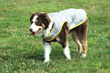 Chillybuddy Cooling Coats