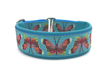 "1.5"" Mariposa Elite Collar"