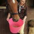 Due to being food grade safe, Large Tubtrugs make the best horse feeders.