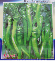 Chinese Space Chilli Seeds Hangijao 6 Image, Chillies on the Web