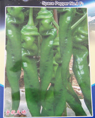 Chinese Space Chilli Seed Hangijao 8 Image, Chillies on the Web