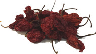 Moruga Scorpion Red Chilli Image, Chillies on the Web