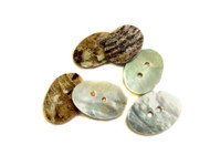 2 Hole Oval Natural Mother of Pearl Button