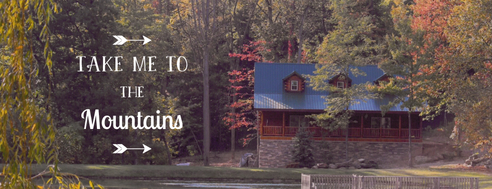 log-cabin-header-ads-take-me-to-the-mountains.jpg